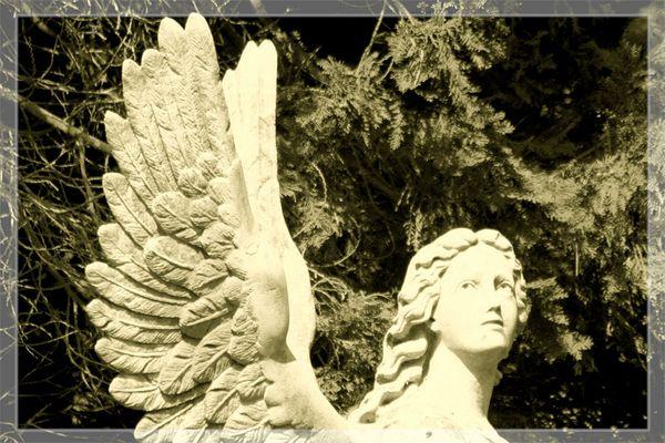 Impressionen vom Au-Friedhof Bad Säckingen