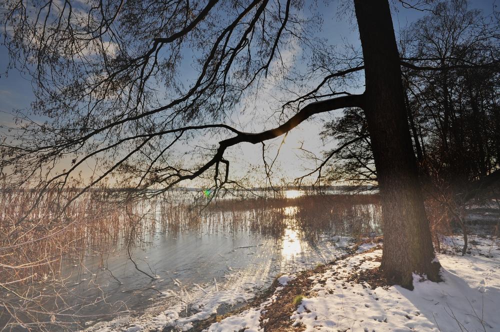 Impressionen vom Rangsdorfer See..........