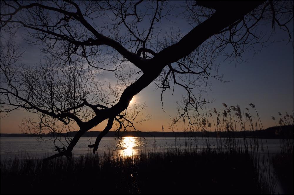 Impressionen vom Rangsdorfer See.........