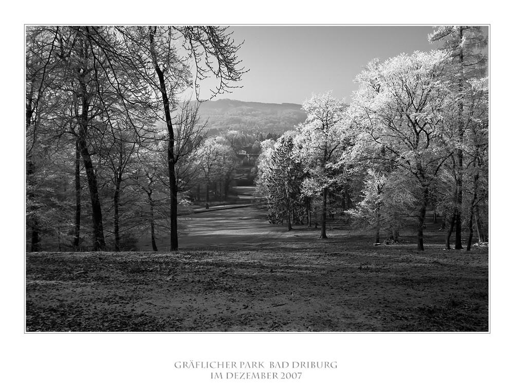 Impressionen/Gräflicher Park Bad Driburg II