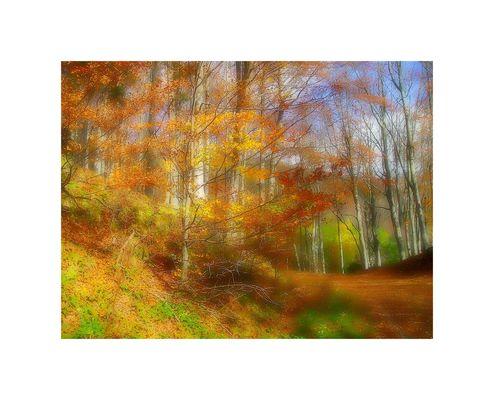 Impressioni d'autunno/2