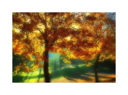 Impressioni d'autunno/4
