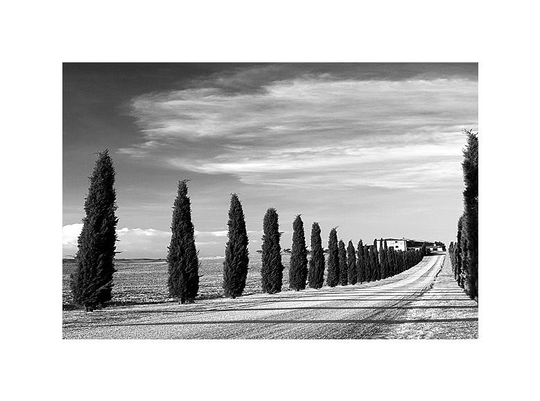 Impressioni Toscana 02