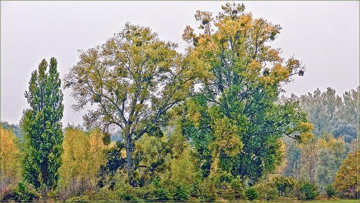 Impressionismus, Malerei des Herbstes