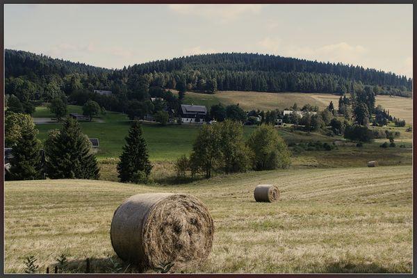 Impressions of Saxonia - Erzgebirge bei zinnwald -2016