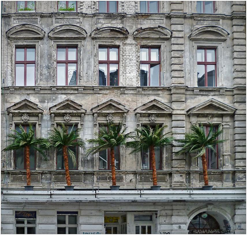 In Berlin wachsen jetzt Palmen...