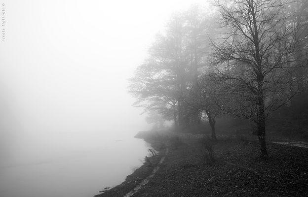 ... in bianco e nero *V/