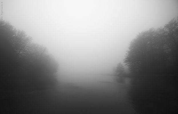 ... in bianco e nero V/