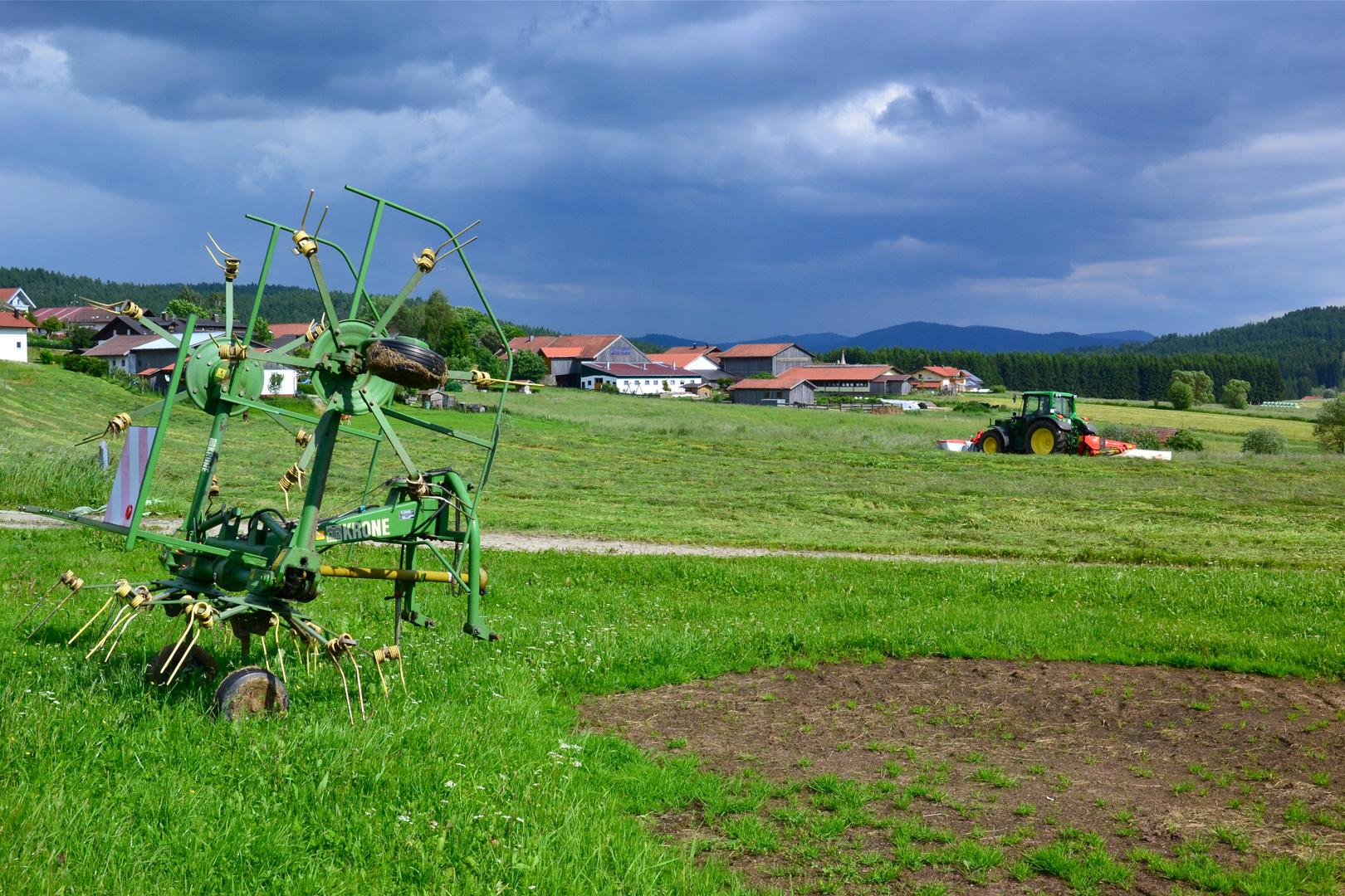 In Brandten sind die Bauern bei der Heuernte