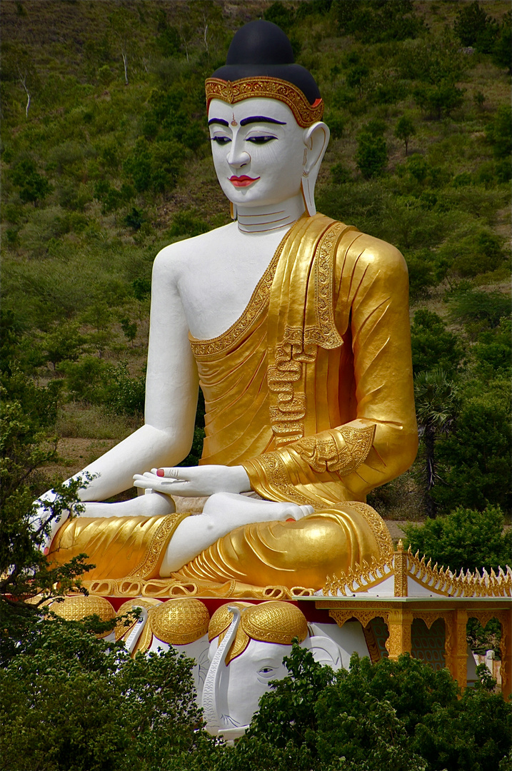 in buddha's garten II