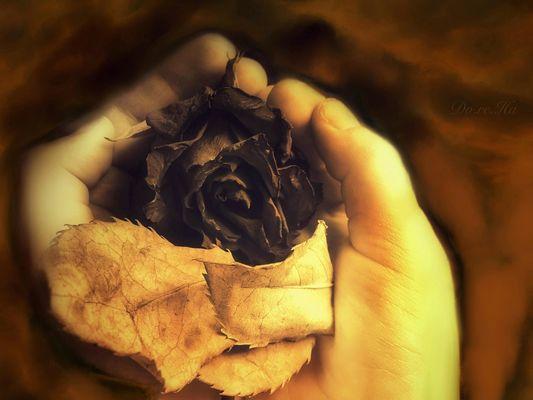 In deinen Händen