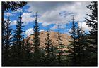 In den Bergen von Utah