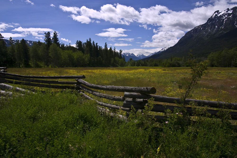 In den Coast Mountains - Chilcotin Country 01