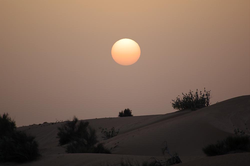 In den Dünen bei Dubai