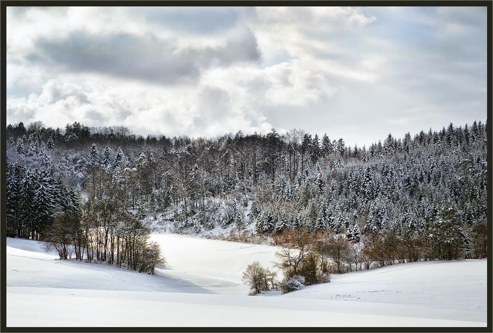 In den Farben des Winters