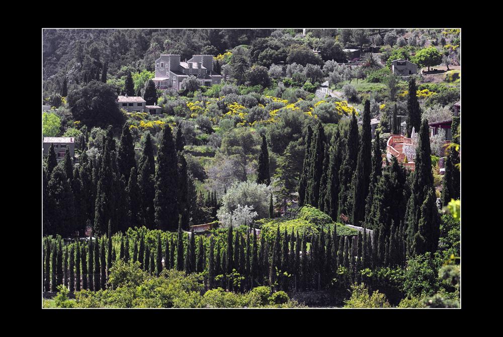 in den Gärten vor Valldemossa II