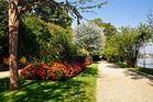 in den Gartenanlagen der Isola Madre