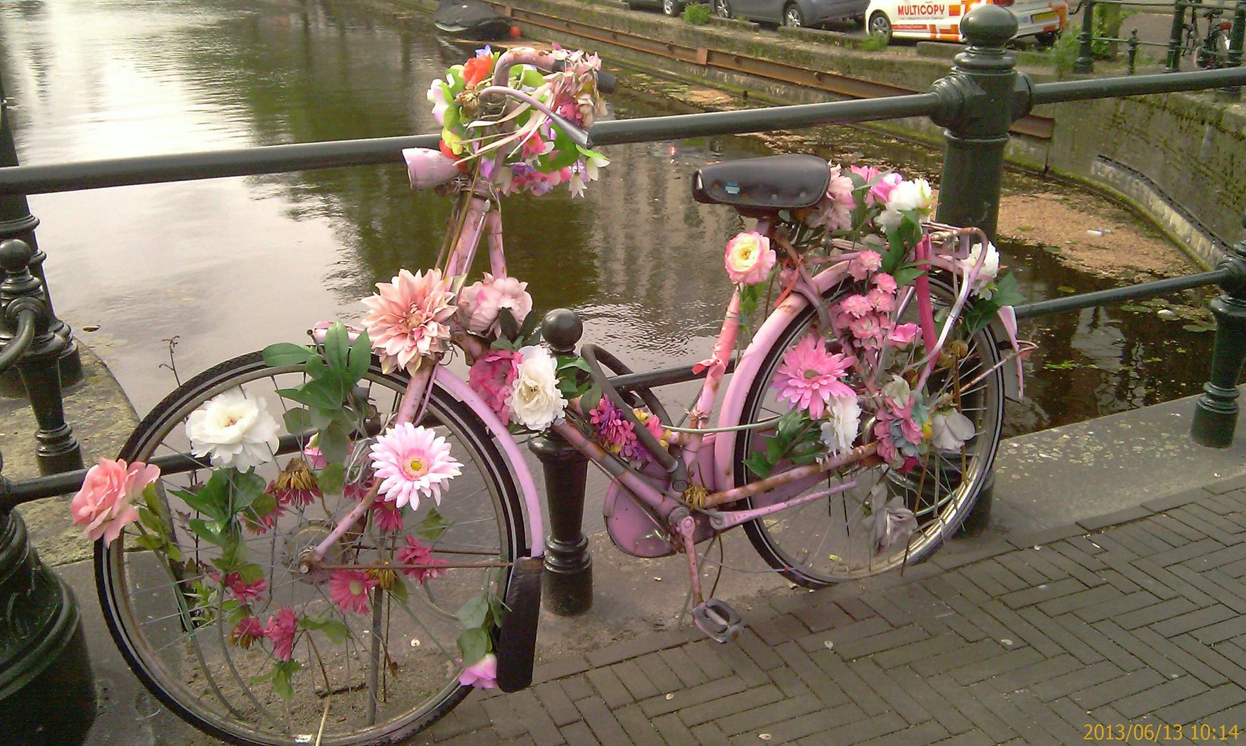 In Den Haag