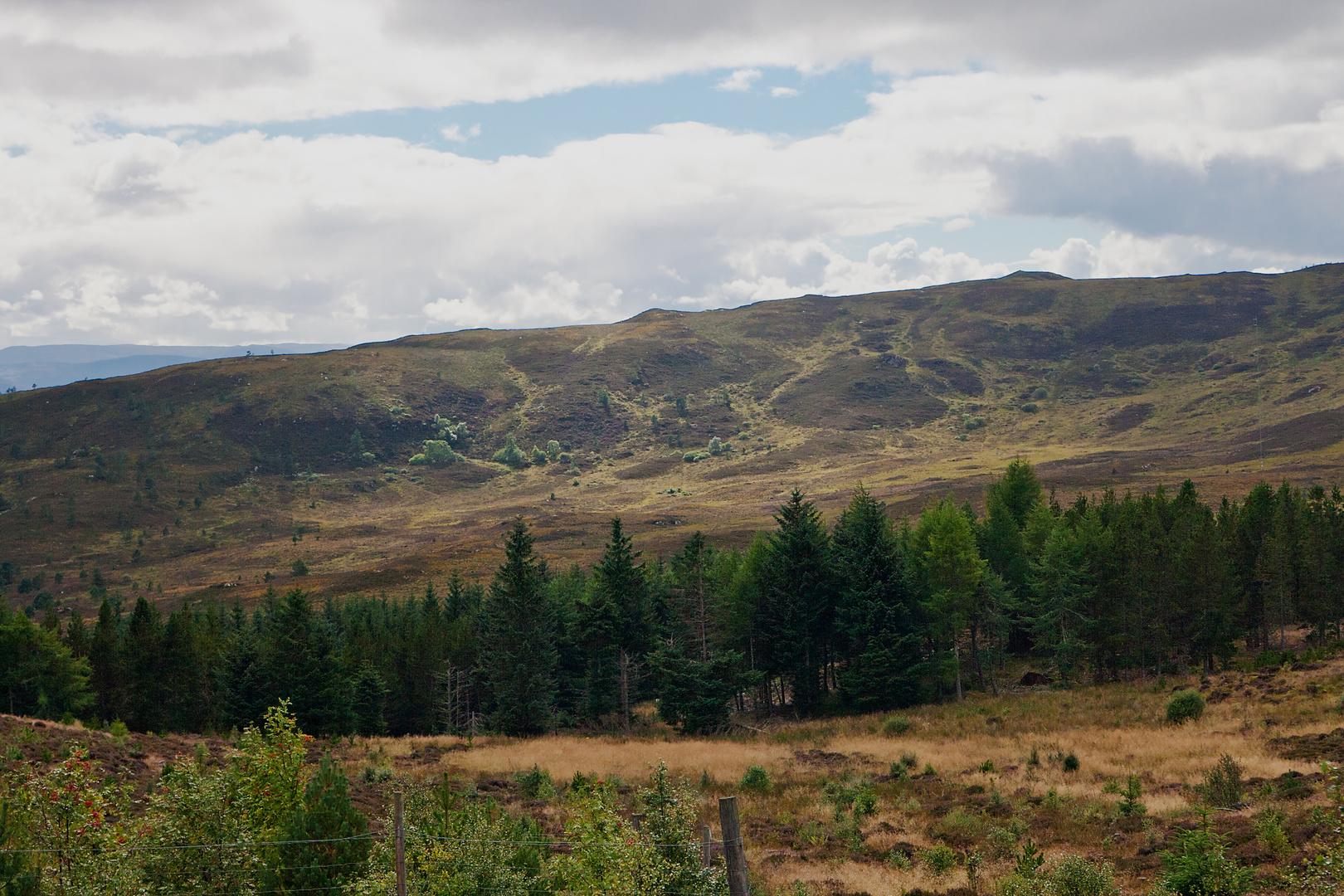 In den Highlands Schottlands -