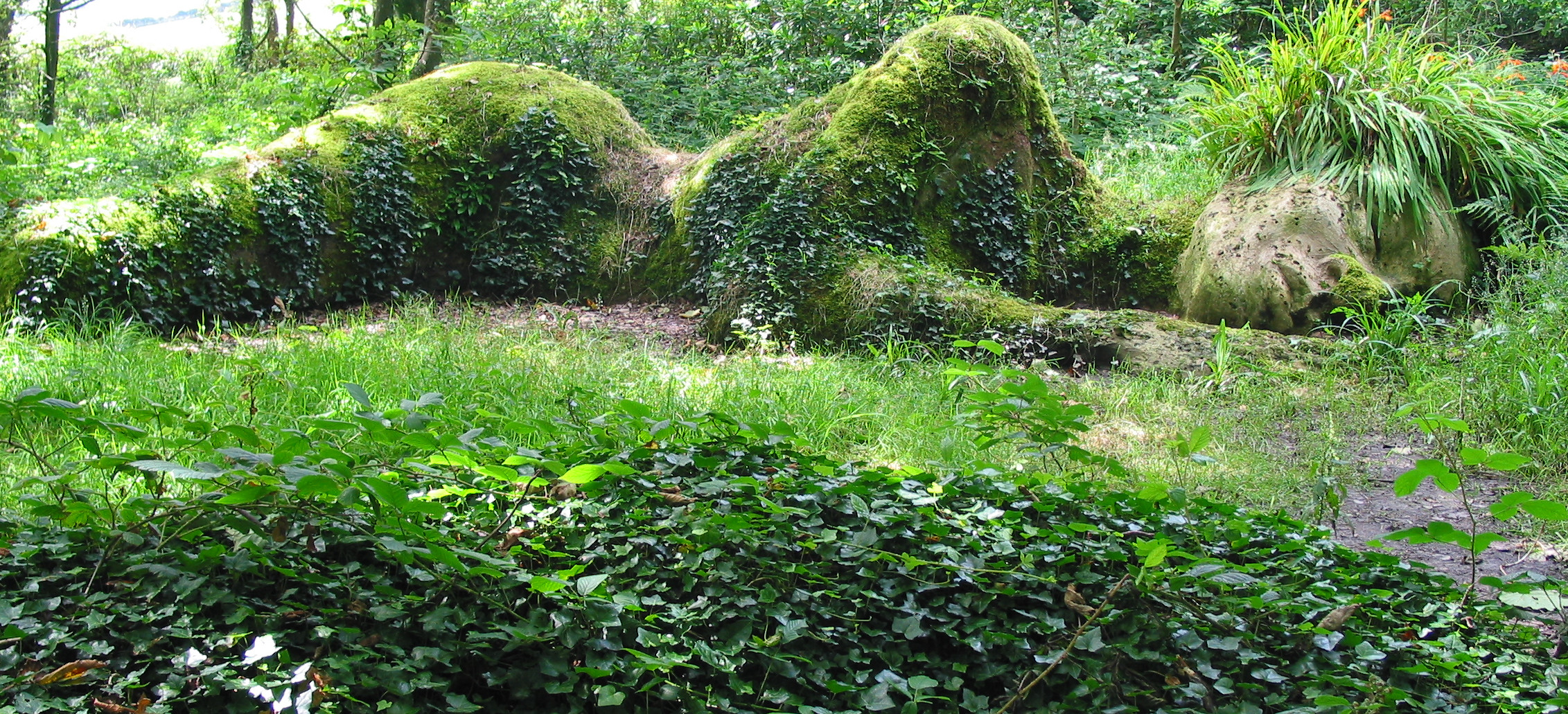 in den Lost Gardens of Heligan (Cornwall)