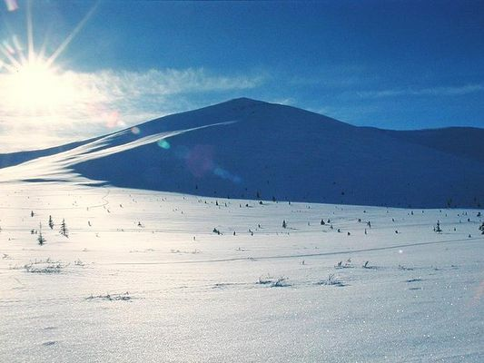 In den White Mountains (Zentralalaska)