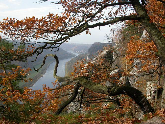 In der Ferne verliert sich die Elbe im Dunst