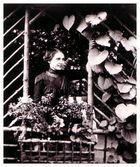 in der Gartenlaube