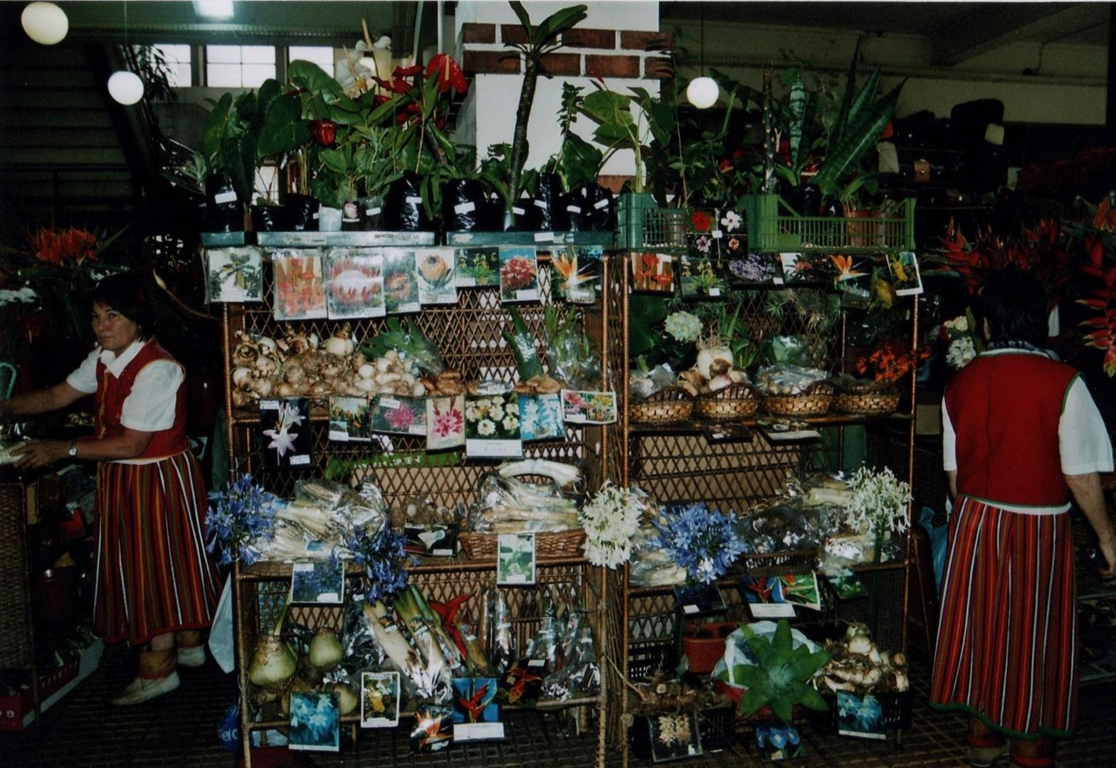 In der Markthalle werden natürlich auch Blumen und Blumenzwiebel angeboten