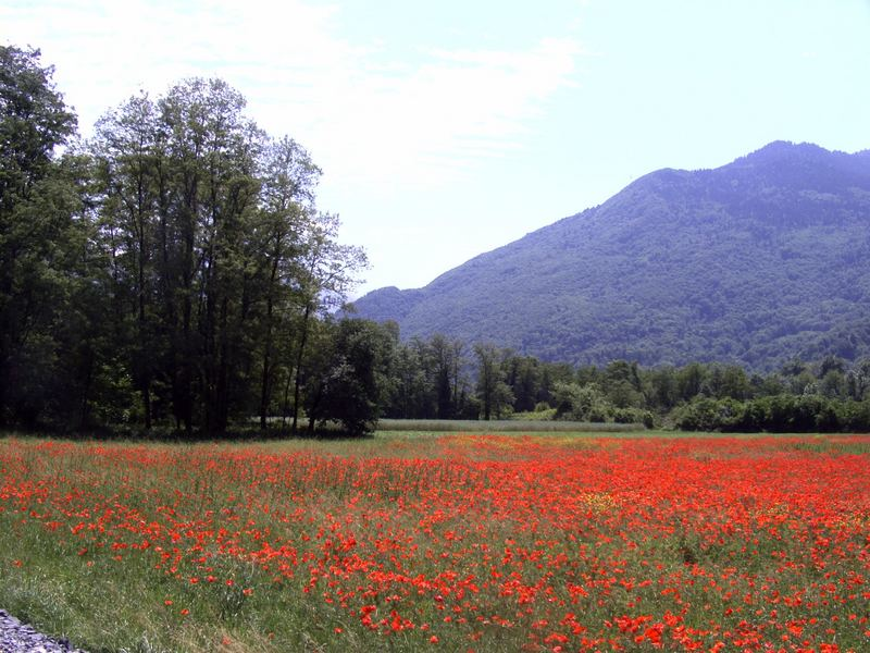 In der Maurienne - En Maurienne
