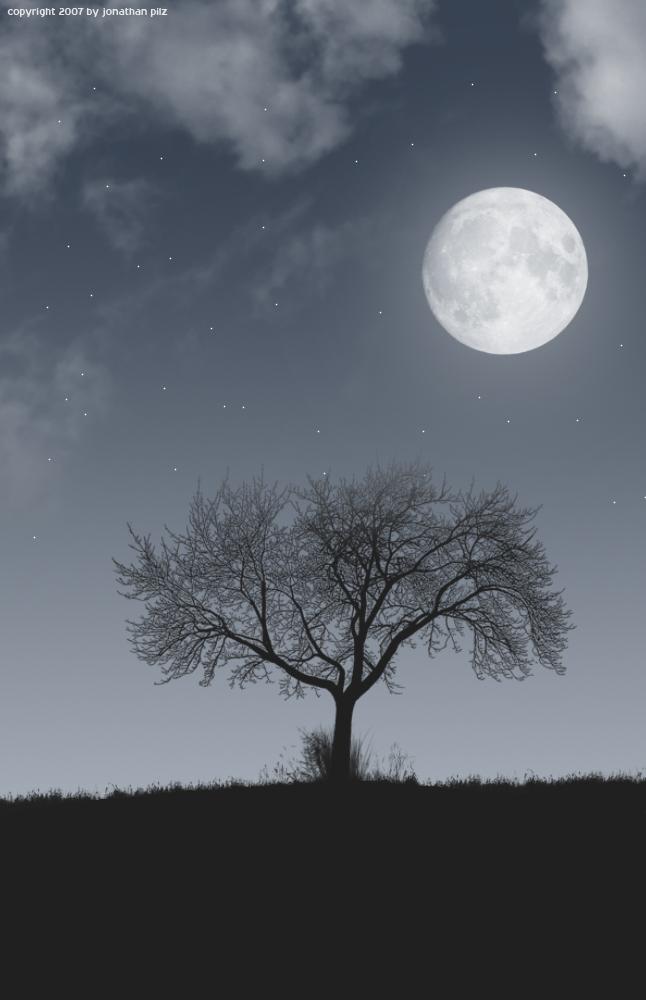 in der Nacht ...