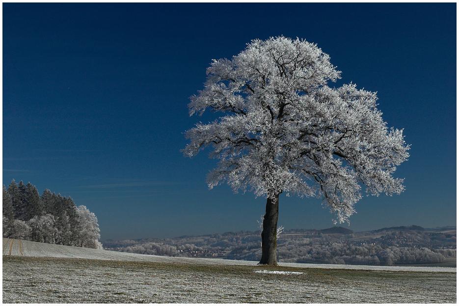 in der Nähe von Fribourg..............