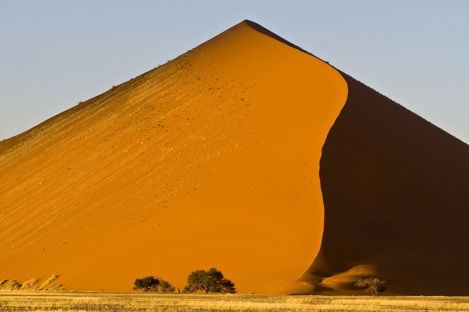 In der Namib / 2009