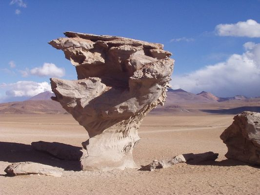 In der Pampa de Atacama