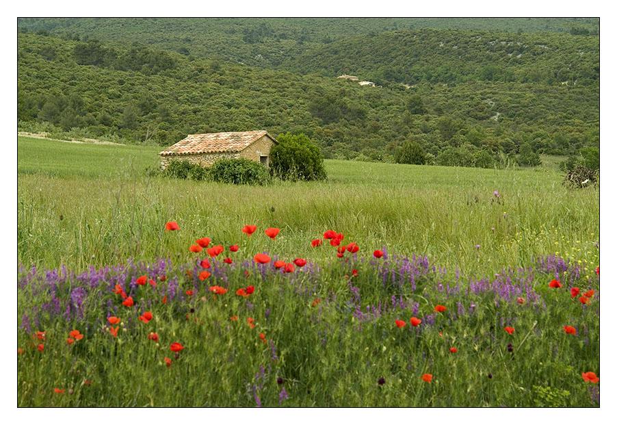 In der Provence...