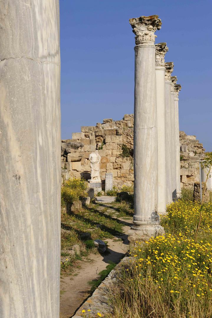 In der Ruinenstadt Salamis