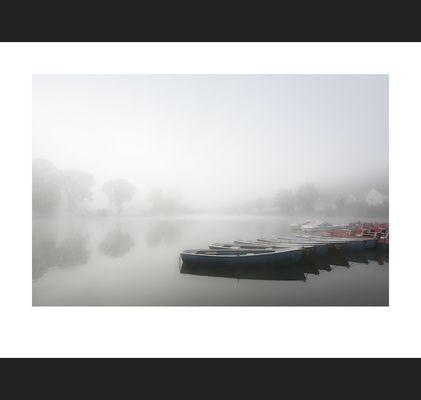 In der Stille des Nebels ...