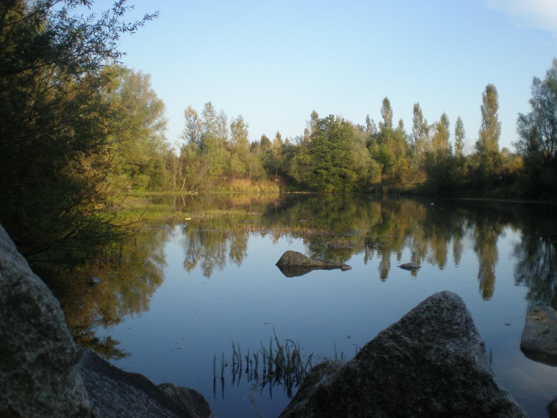 In der Traunau OÖ, Okt 2009