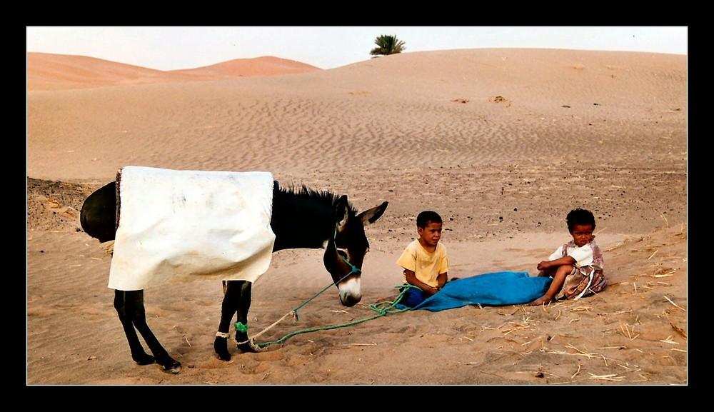 In der Wüste...