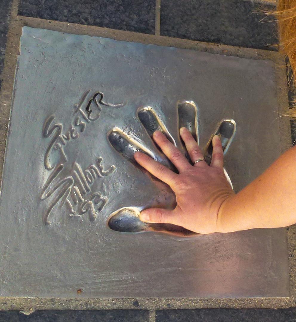 in die Hand von Sylvester