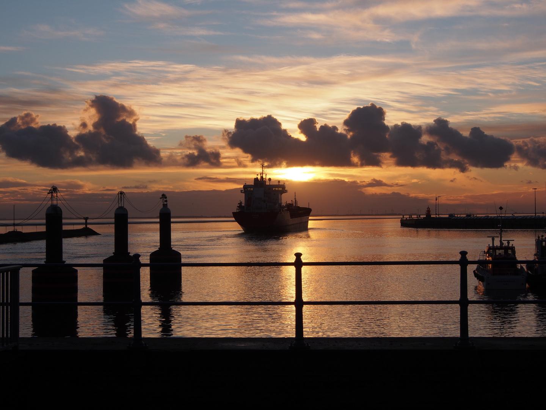 In die Nordsee entlassen