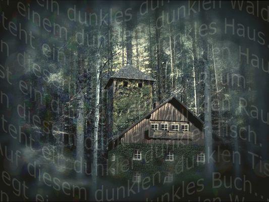 In einem dunklen, dunklen Wald