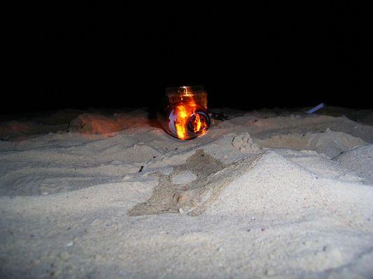 in flames II