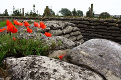 ~ In Flanders Fields ~