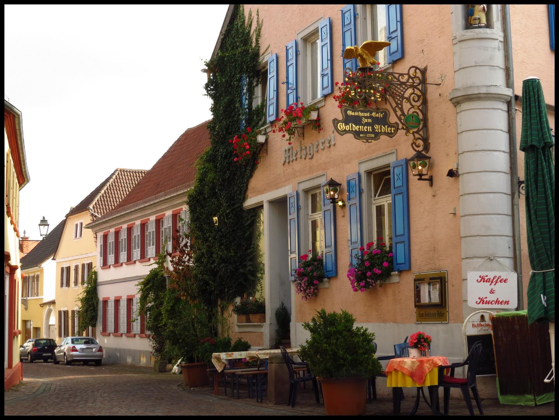 in Freinsheim