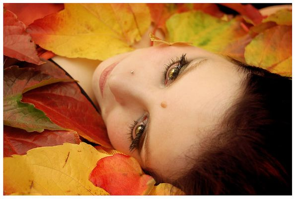 .:in Herbstlaub gebettet:.