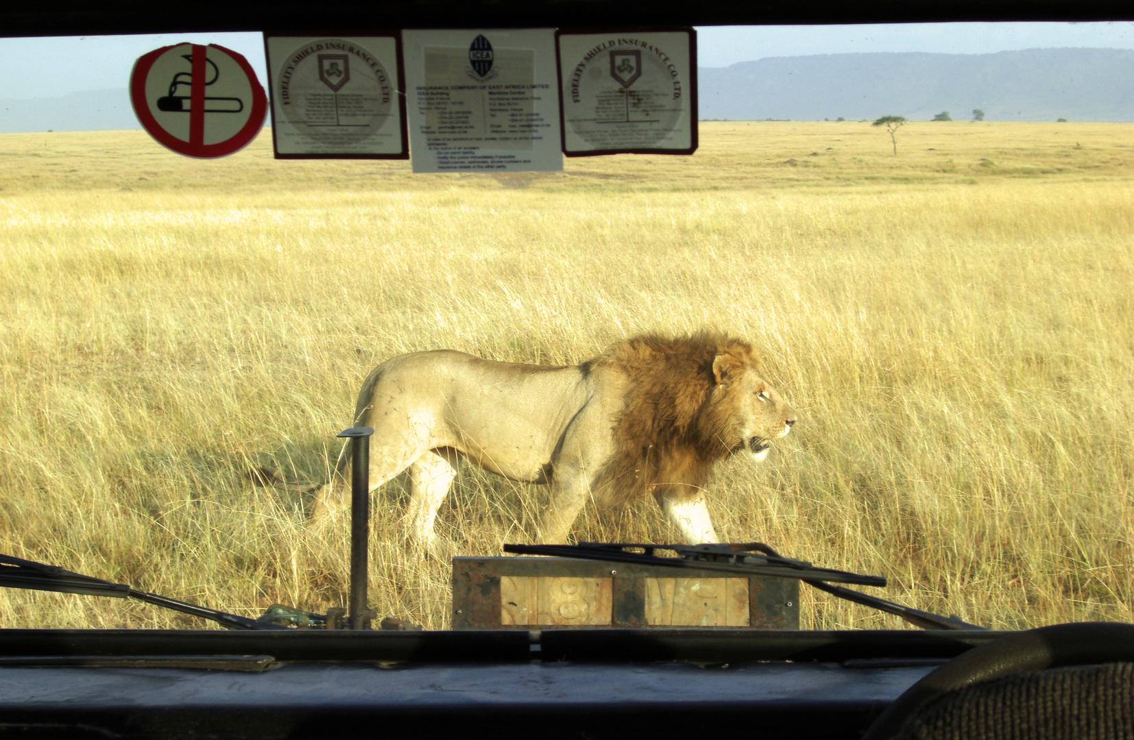 In Kenia gilt: links vor rechts.
