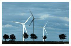 In Land der Windräder