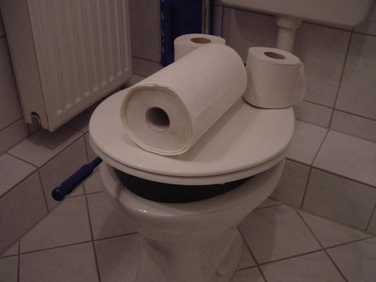 In meinem Badezimmer wohnt Toiletten Fritz