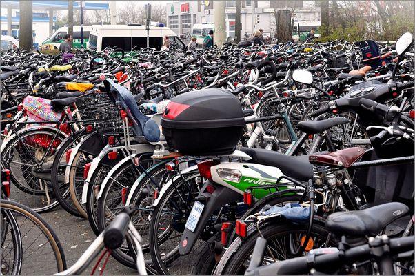 In Münster fährt man Rad
