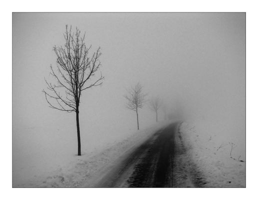 ***in Nebel***
